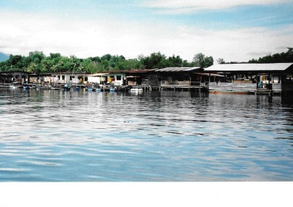 Borneo 18.jpg