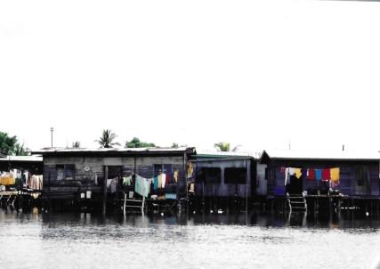 Borneo 19.jpg